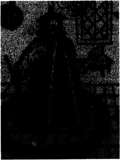 lf0353-13_1981v1_figure_007